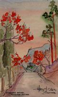 Осенний вечер, пыльная листва (Тушь, акварель, размывка)