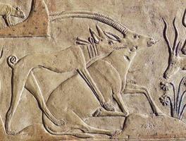 Барельеф, храм Птаха, Египет